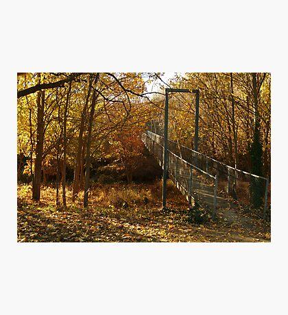 Autumn Walk Clunes Photographic Print