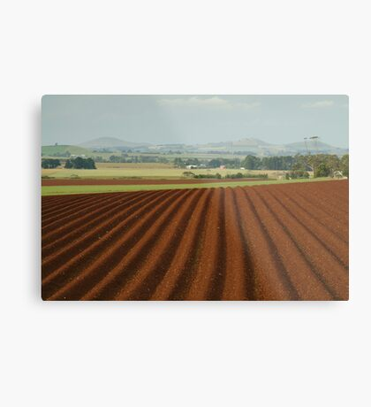 View to Seven Hills of Smeaton Metal Print