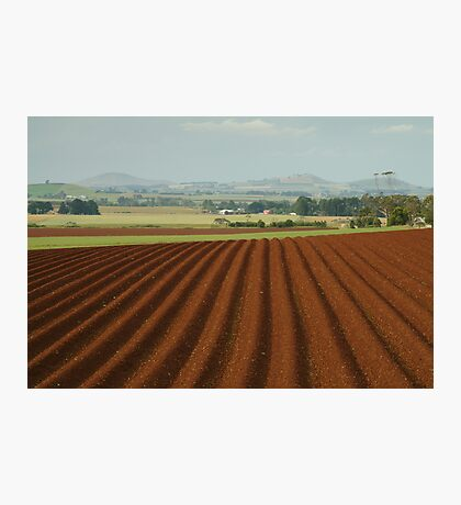 View to Seven Hills of Smeaton Photographic Print