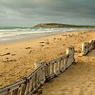 Early Morning Raaf's Beach by Joe Mortelliti