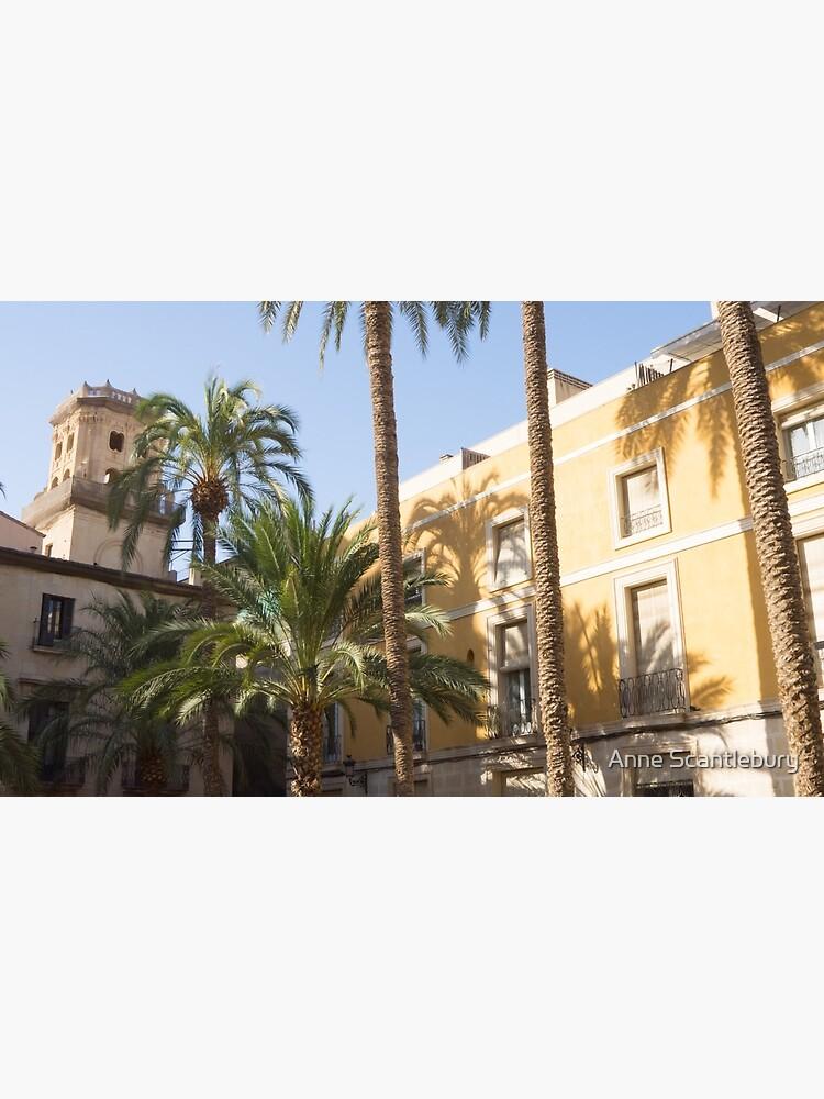 Alicante street. by sma1050