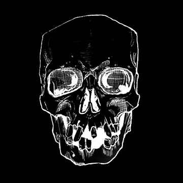 White Skull Black Light by acompanyofn3rds