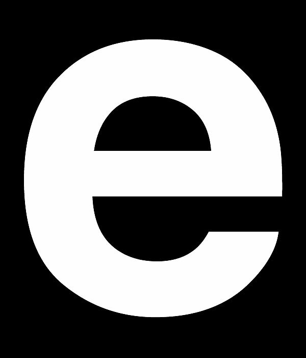 the e party flag by Andy Petrusevics