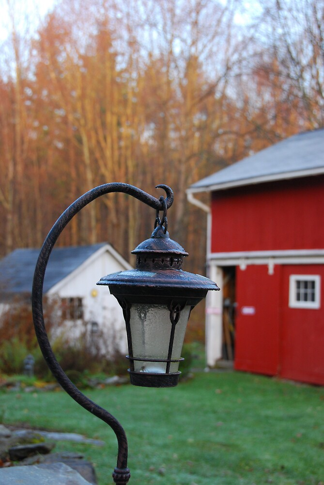 Morning yard by chrisg