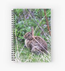 Eastern Cottontail in the Brush Spiral Notebook