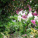 The Secret Garden by Sandra Fortier