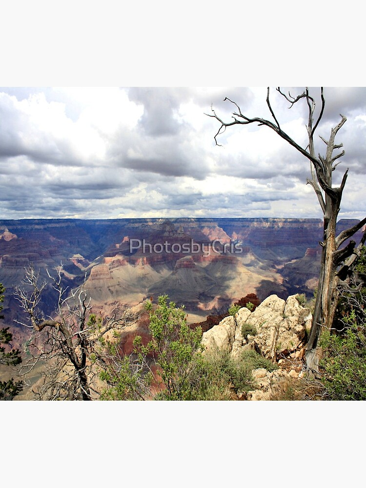 Grand Canyon by PhotosbyCris