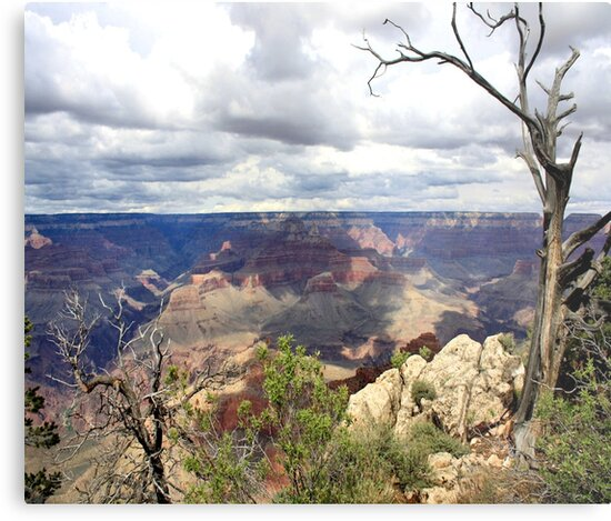 Grand Canyon by PhotosbyCris