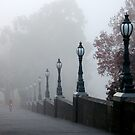 Foggy Melbourne  by Andrew Wilson