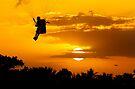 Sunset Paragliding 2 by Alex Preiss