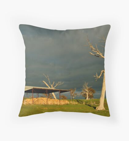 Sunrise Storm Clouds Rowsley Valley Throw Pillow