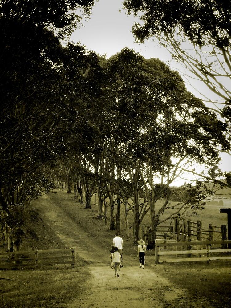Walk to chookshed by Laz Moutafis