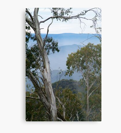 High Country Fog Layers Metal Print