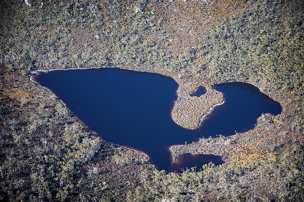 Tasmanian Lake from the air by Mark Williamson
