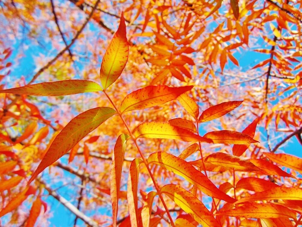 Glowing Leaves by everpresent