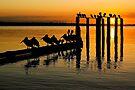 Port Phillip Bay by Darren Stones
