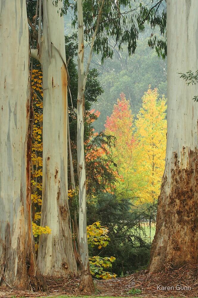 Australian Autumn  by Karen Gunn