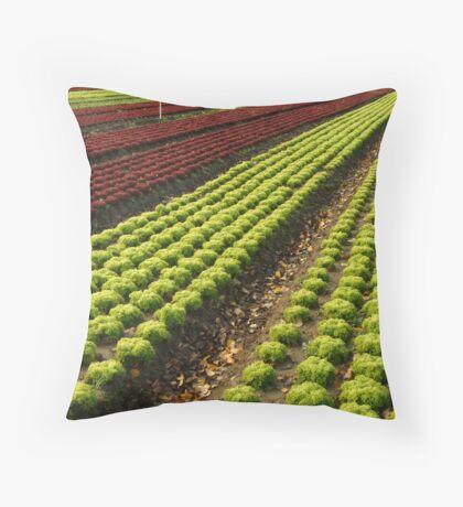 Lettuce Farm Throw Pillow