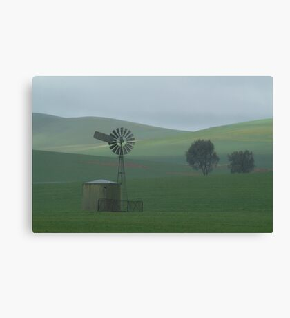 Misty Rain Southern Flinders Ranges Canvas Print