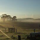 Misty Morning by atacj05