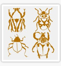 Insect Design Sticker