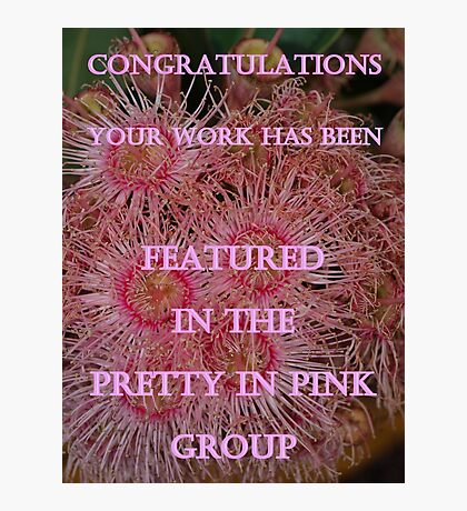 Pretty in Pink - Feature Challenge Photographic Print