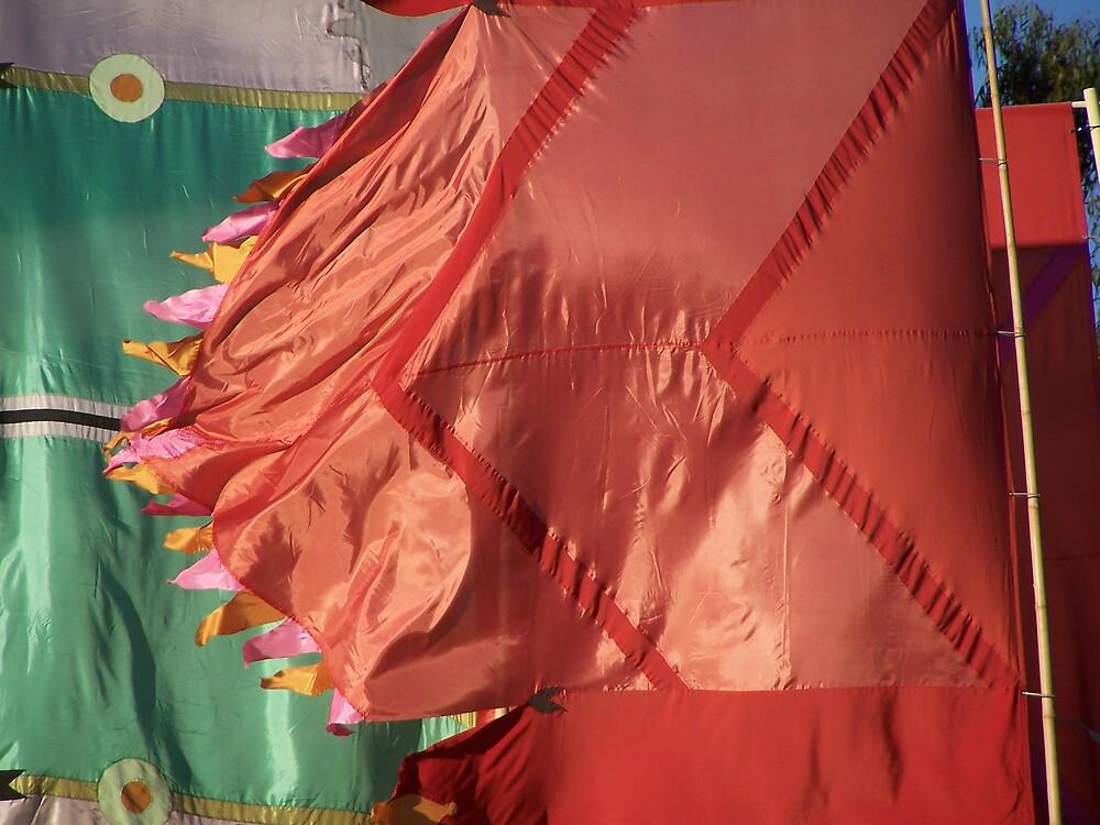 Flags by Princessbren2006