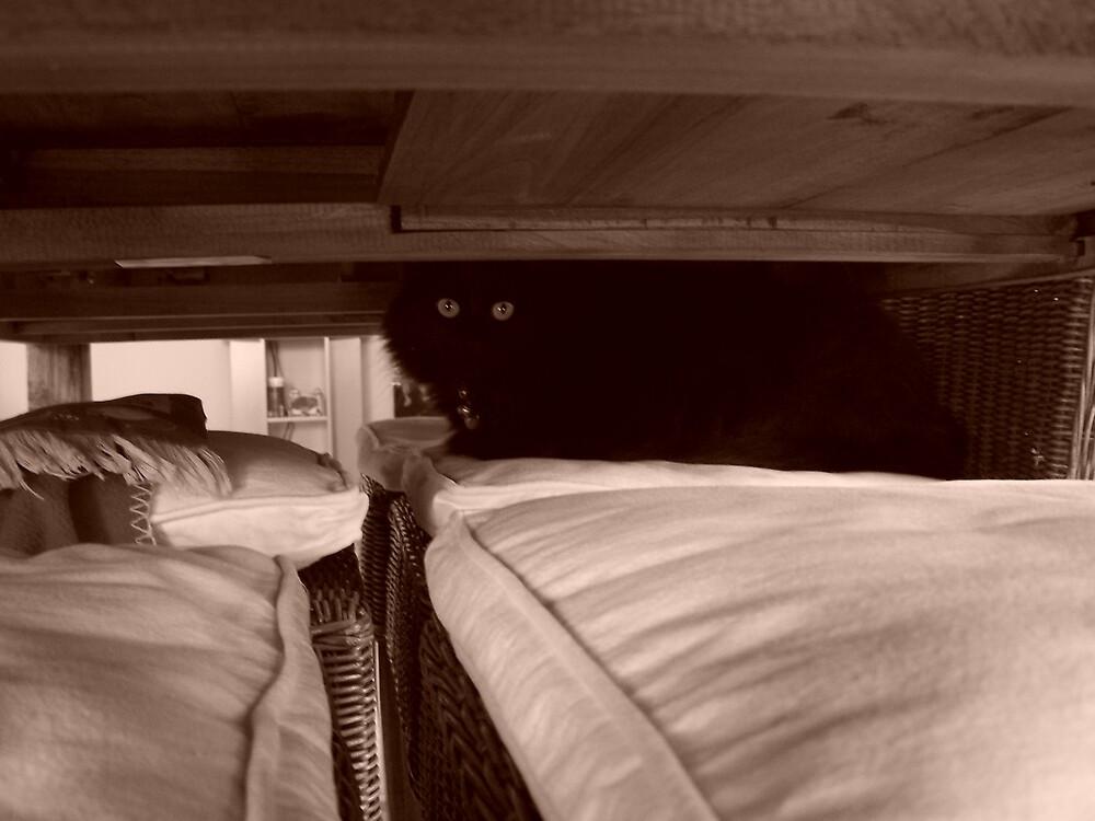 Hiding by Princessbren2006