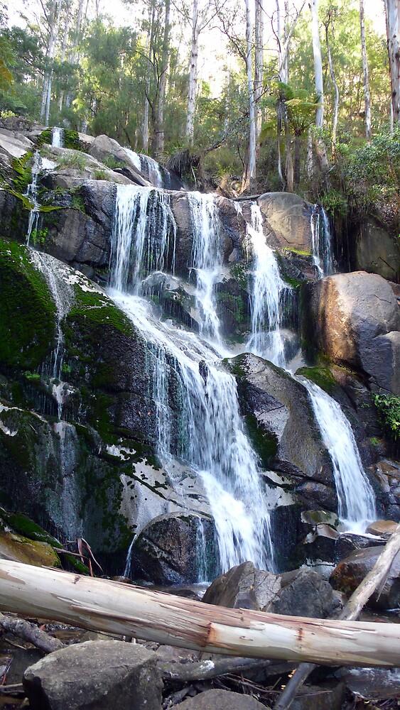 Tooronga Falls. by leet