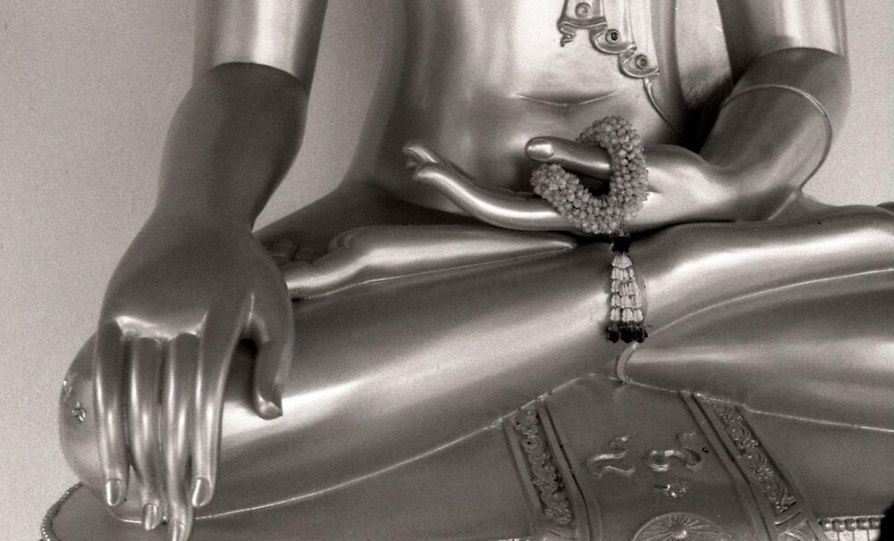 Buddha hands by Heidi Wernicke