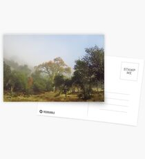 The Fog Lifts Postcards