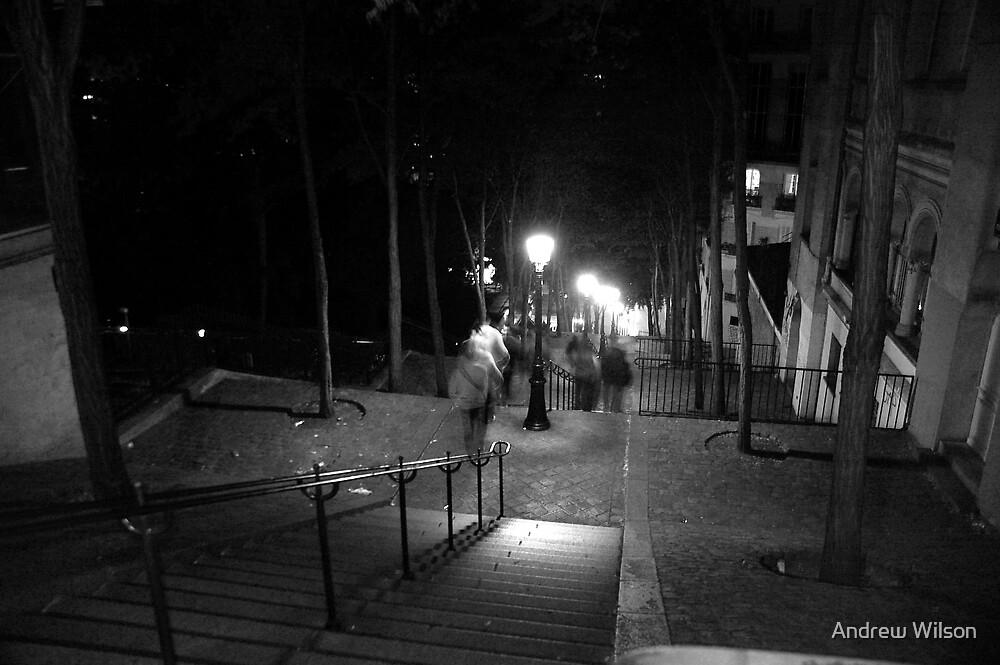 Steps of MontmartreParis by Andrew Wilson
