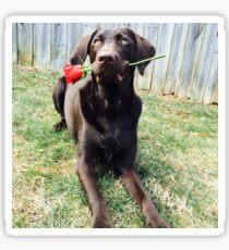 Dog and Rose Sticker