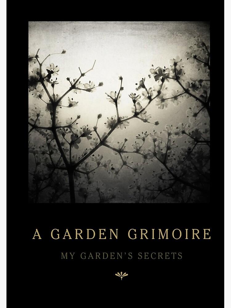 Garden Journal: Elderflowers by Wytchery