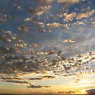 Port Phillip Sunset by Killjoy