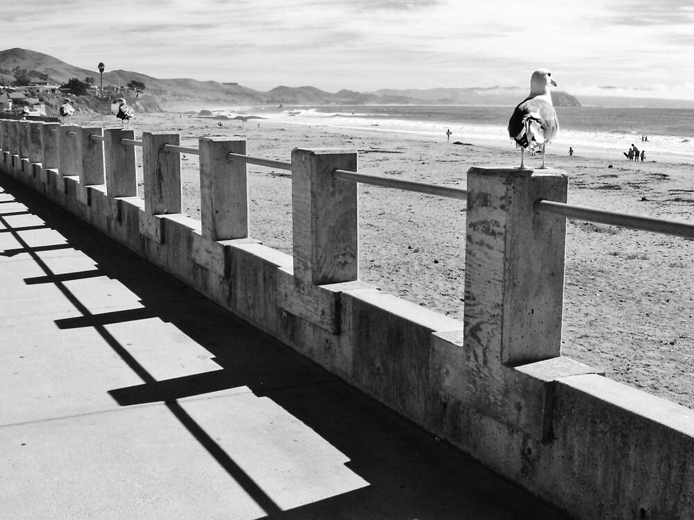 Along the Cayucos Boardwalk by everpresent