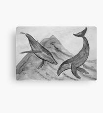 Buckelwale vor Insel Pico - Farbe schwarz/weiß Metal Print