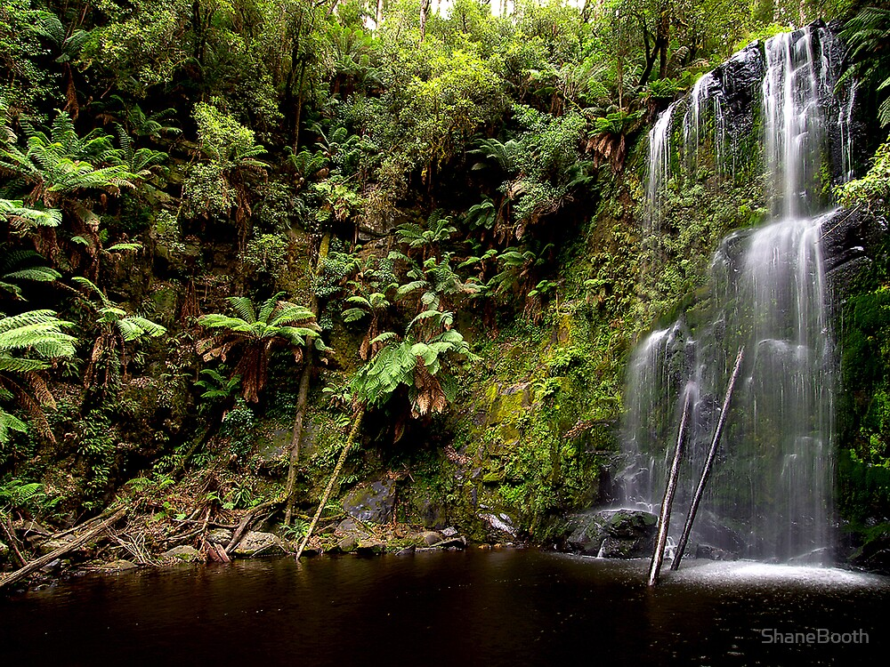 Beauchamp Falls by ShaneBooth