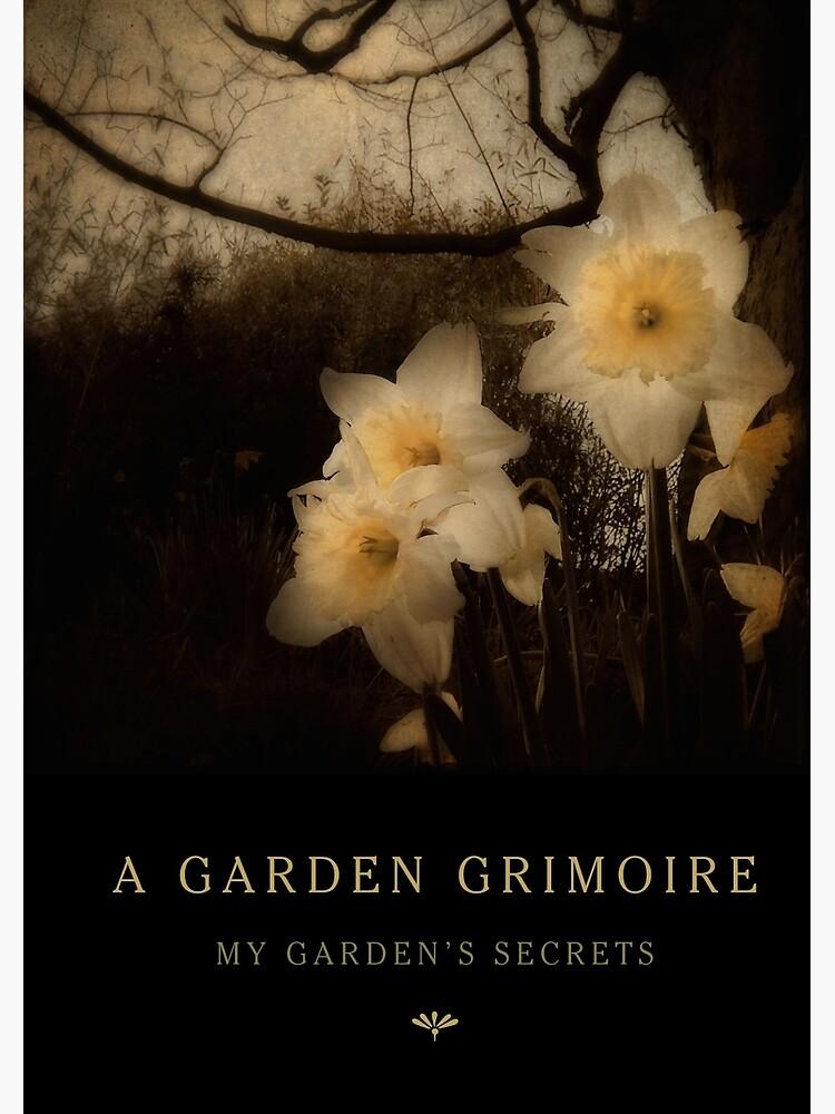 Garden Journal: Daffodils by Wytchery