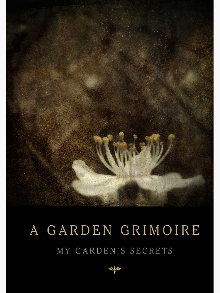 Garden Journal: Blackthorn by Wytchery