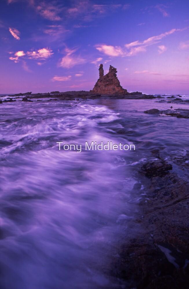 morning hues by Tony Middleton