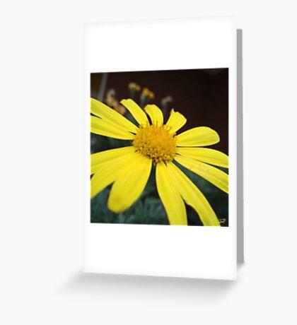 Petals of Gold Greeting Card