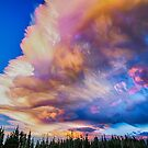 High Elevation Forest Sunset Sky Timed Stack by Bo Insogna