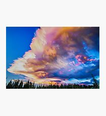 High Elevation Forest Sunset Sky Timed Stack Photographic Print