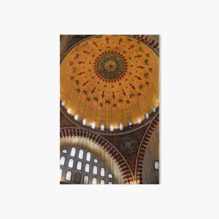 Suleymaniye Art Board Print