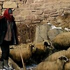 Shepherd in Sille by Jens Helmstedt