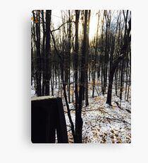 Great Outdoors  Canvas Print