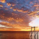 Heron Sunset by Mark Davey
