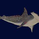Space Shark by pokegirl93