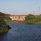 Railway bridge over the Mahlongwana River by richeriley